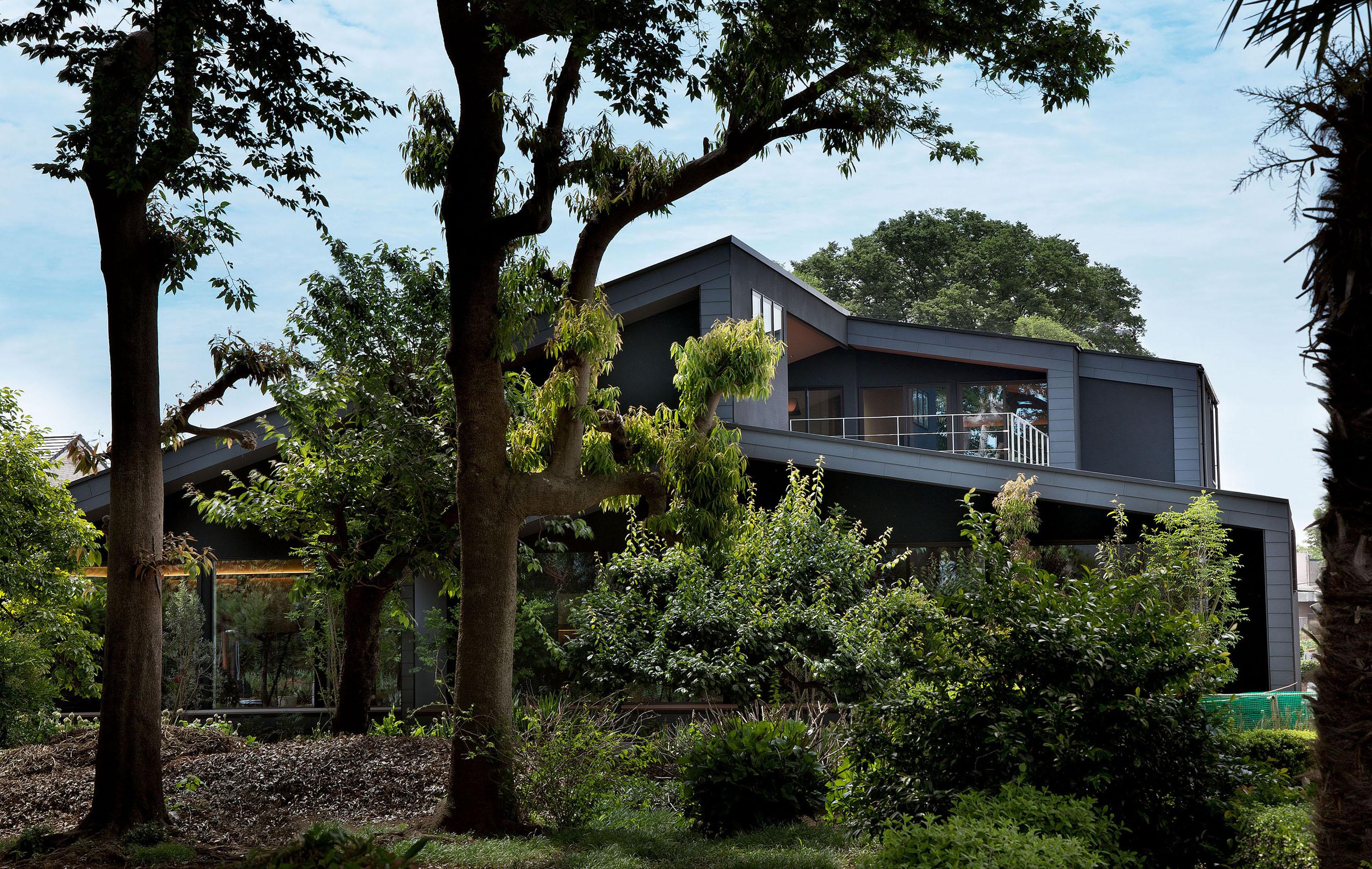 整形外科 クリニックデザイン 外観 森林 自然 平岡建築デザイン